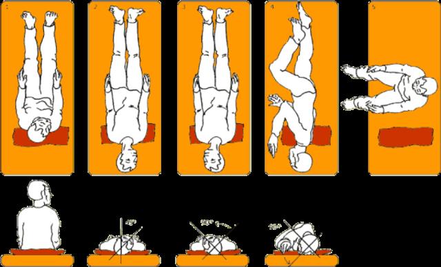 How to Treat Vertigo at Home with Exercises | Advanced ...